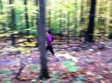 me, trail running in early autumn 2013... this is pre-Nut, but gives a visual of my usual trail.